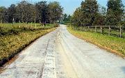 Ремонт  сельской дороги методом стабилизации грунта полимером   (227).jpg