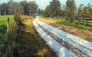 Ремонт  сельской дороги методом стабилизации грунта полимером   (217).jpg