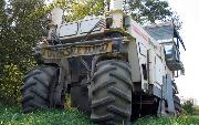 Ремонт  сельской дороги методом стабилизации грунта полимером   (206).jpg