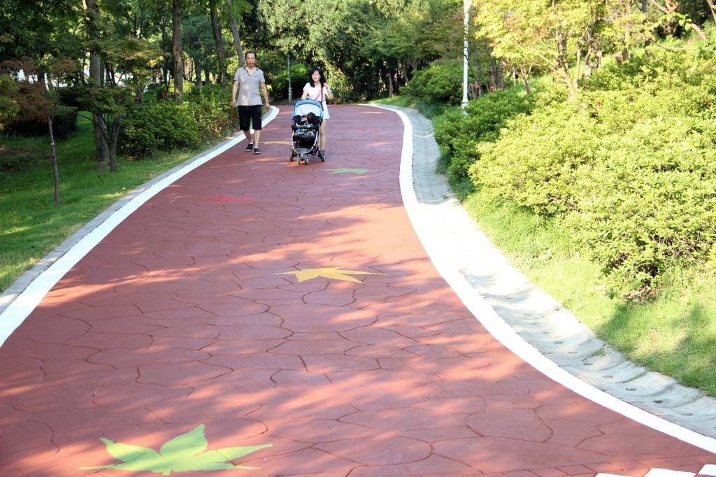 Пешеходная дорожка в Шанхае (6).jpg